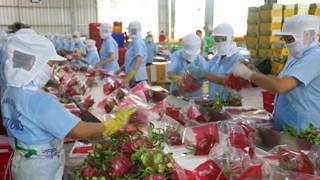 Экспорт сельскохозяйственной продукции в Китай снова вырос
