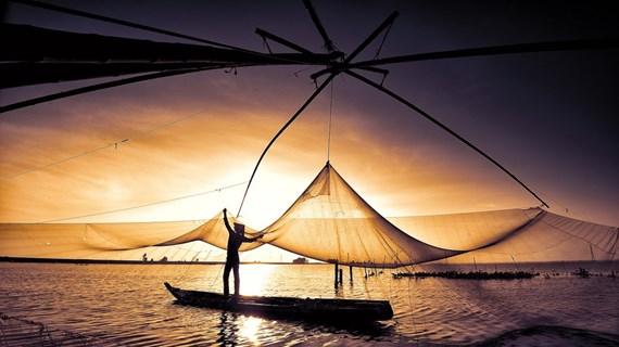 Плавучий сезон в провинции Анжанг