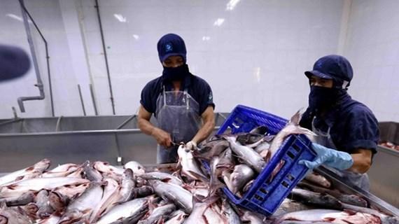 Экспорт морепродуктов в Китай демонстрирует признаки восстановления