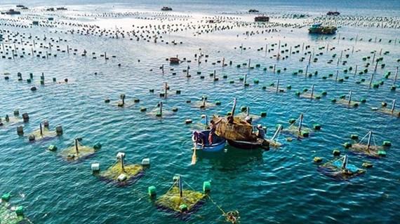 Синхронное развитие инфраструктурных систем, служащих морской аквакультуре