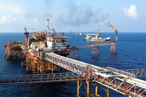 Вьетнамская государственная нефтегазовая компания занимает лидирующие позиции в экономике Вьетнама по показателям прибыли hinh anh 1