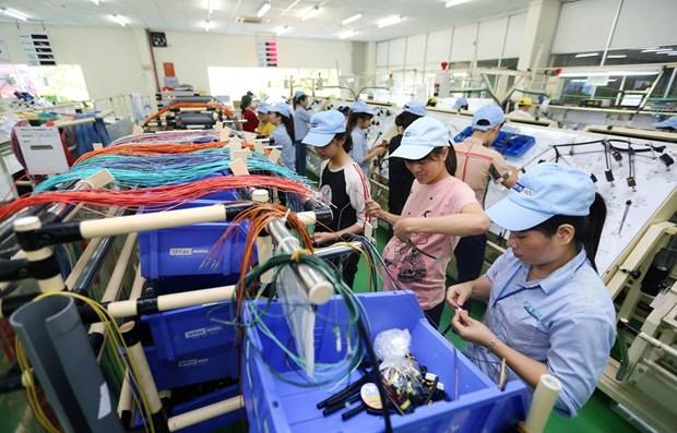 «Факторы нового направления экономического роста пока еще не появились» hinh anh 1