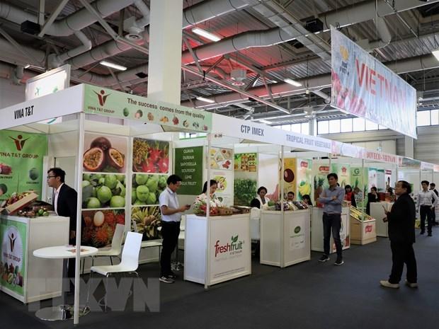 Вьетнамские фрукты на выставке «Fruit Logistica 2020» hinh anh 1