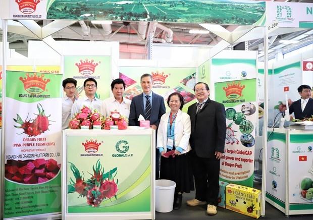Вьетнамские фрукты на выставке «Fruit Logistica 2020» hinh anh 2