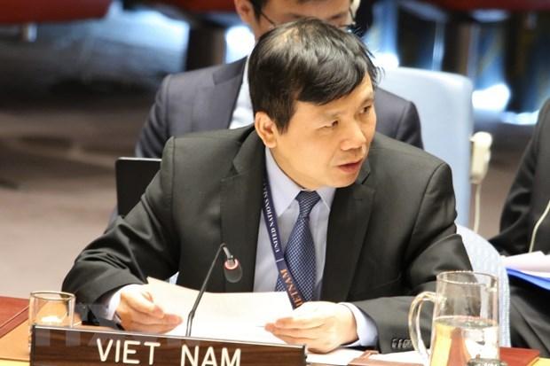 Вьетнам поддерживает решение проблемы терроризма в Африке hinh anh 1