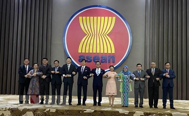 АСЕАН и Япония договорились укреплять стратегическое партнерство hinh anh 1