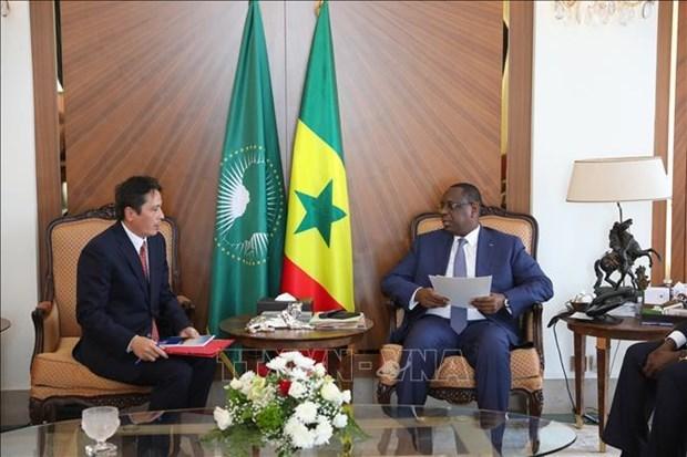 Вьетнам и Сенегал расширяют сотрудничество во многих областях hinh anh 1