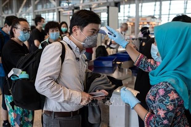 Посольство Вьетнама поддерживает граждан, оказавшихся в аэропорту Малаизии hinh anh 1