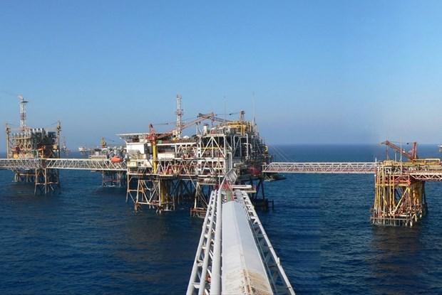Эпидемия COVID-19: корректировка стратегии для нефтегазовои промышленности для преодоления двух неблагоприятных факторов hinh anh 1