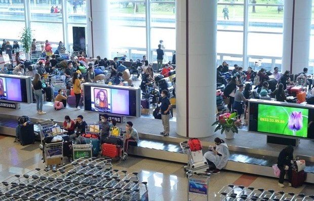 Реисы во вьетнамскии аэропорт Таншоннят приостановлены hinh anh 1