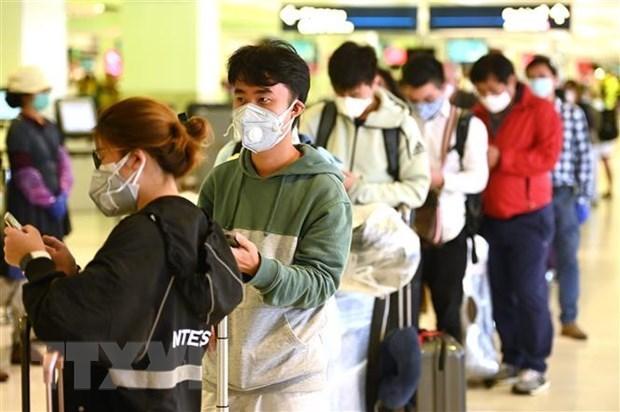 МИД Вьетнама дал рекомендации о путешествии граждан hinh anh 1