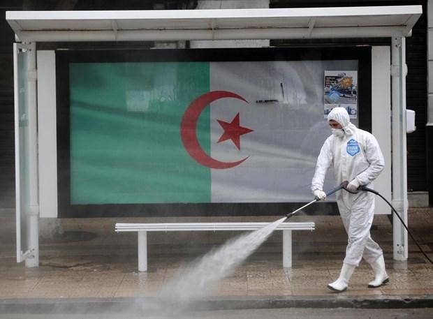 Граждане Вьетнама в Алжире призваны строго соблюдать антипандемические правила hinh anh 1