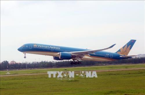 Vietnam Airlines сокращает частоту внутренних реисов hinh anh 1