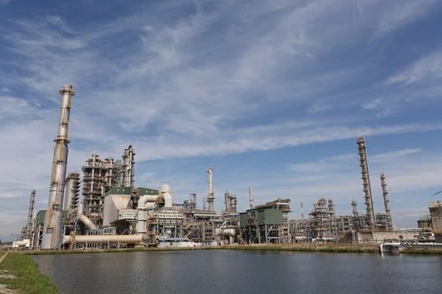 Добыча сырои нефти в первом квартале 2020 года превысила план hinh anh 1