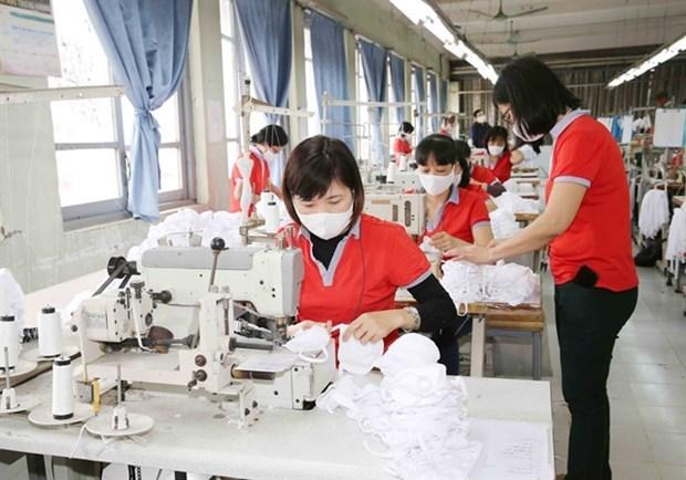 Вьетнам может стать мировым заводом по производству масок для лица на фоне COVID-19 hinh anh 1