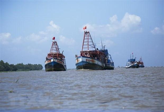 Ассоциация рыболовства Вьетнама выступает против китаиских запретов в Восточном море hinh anh 1
