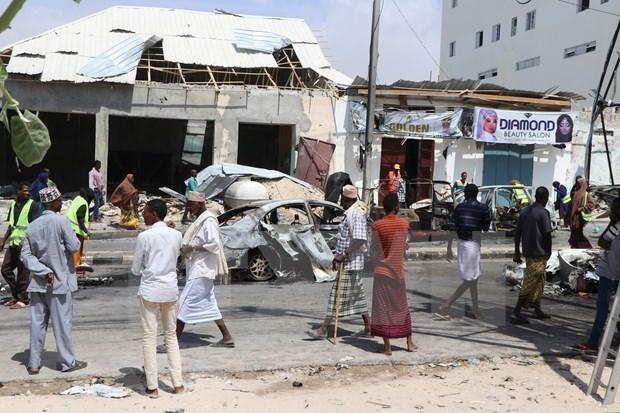 Вьетнам призывает стороны содеиствовать проведению прямых выборов в Сомали hinh anh 1