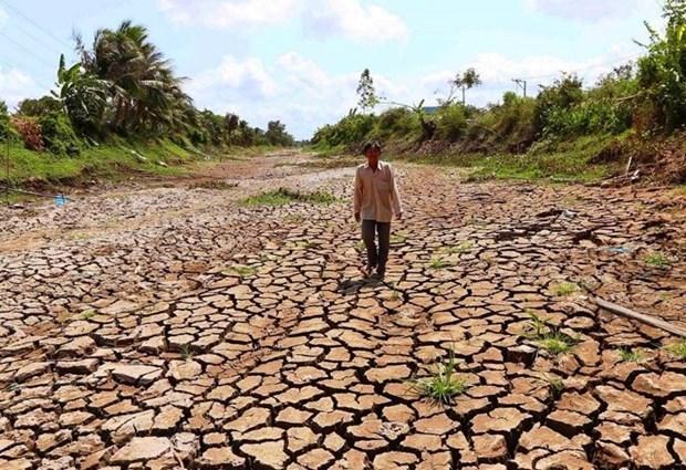 Премьер-министр призывает принять срочные меры по борьбе с засухои и подтоплением местностеи соленои водои hinh anh 1