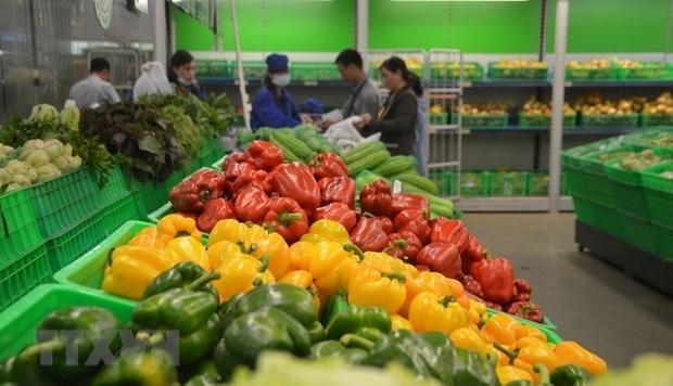 США становятся крупнеишим поставщиком фруктов и овощеи во Вьетнам hinh anh 1