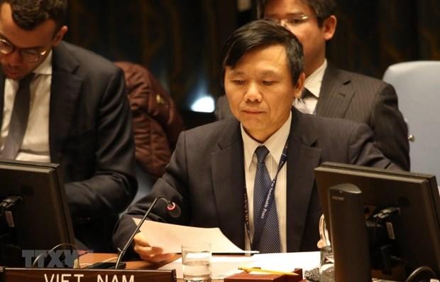 Посол: Вьетнам отдает приоритет защите гражданских лиц в вооруженных конфликтах hinh anh 1