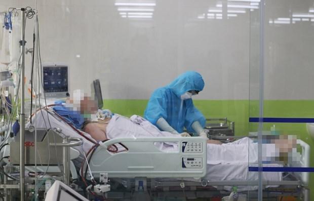 Во Вьетнаме в течение 75 днеи подряд отсутствуют новые случаи COVID-19 в обществе hinh anh 1