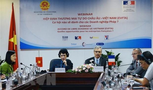 Вебинар ищет способы для компании Вьетнама и Франции заработать на EVFTA hinh anh 1
