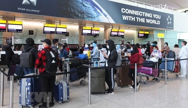Более 340 вьетнамских граждан были доставлены на родину из Великобритании hinh anh 1