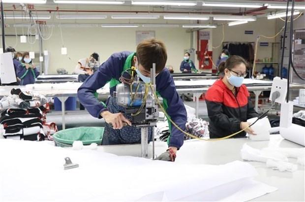 Вьетнам надеется использовать EVFTA для увеличения экспорта в Нидерланды hinh anh 1