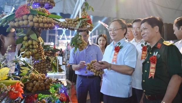Открытие фестиваля Лонган Хынгиен 2020 hinh anh 1