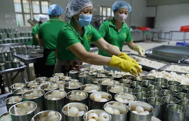 Прогнозируется, что в 2021 году экономическии рост достигнет 7% hinh anh 1