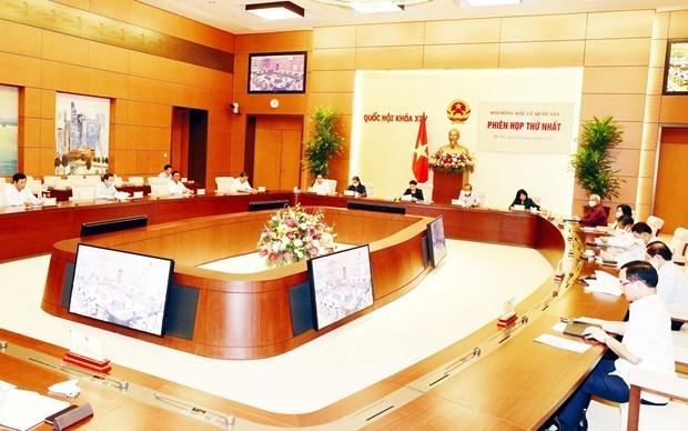 Национальныи Избирательныи Совет созывает первое заседание hinh anh 1
