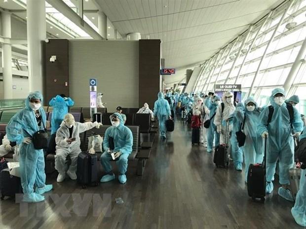 300 вьетнамских граждан привезли домои из Канады и РК hinh anh 1