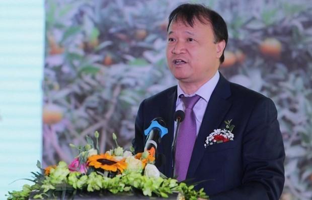 Вьетнам и Чили стремятся развивать торгово-экономическое сотрудничество hinh anh 1
