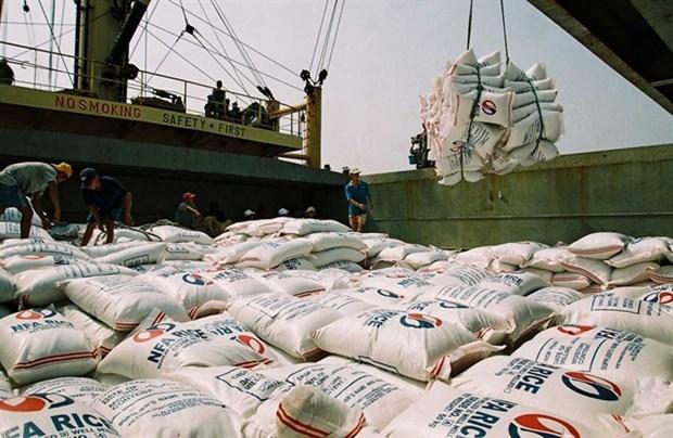 Вьетнам экспортирует 3,9 млн. тонн риса за 7 месяцев hinh anh 1