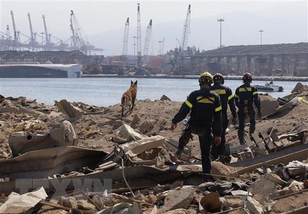 Министры иностранных дел стран АСЕАН выступили с заявлением по поводу взрыва в Ливане hinh anh 1