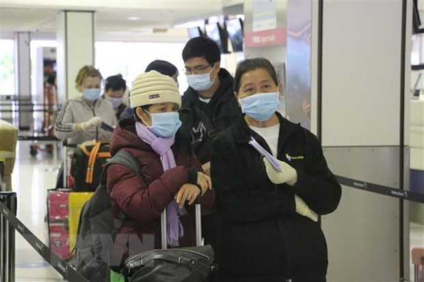 Более 340 вьетнамских граждан были благополучно доставлены домои из РФ hinh anh 1