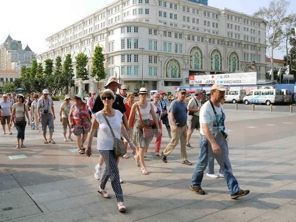 Туристическим фирмам города Хошимина нужна помощь правительства, чтобы выжить hinh anh 1