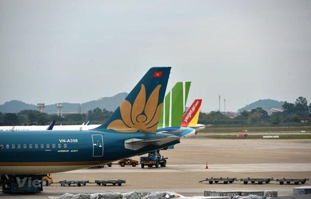 Некоторые международные авиамаршруты могут быть возобновлены с 15 сентября hinh anh 1