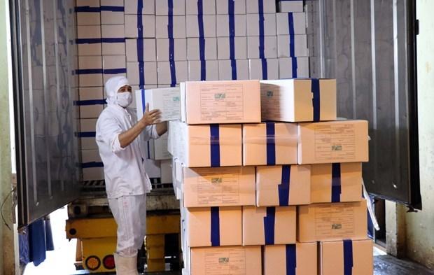 Вьетнам экспортирует первую партию креветок в ЕС в рамках EVFTA hinh anh 1