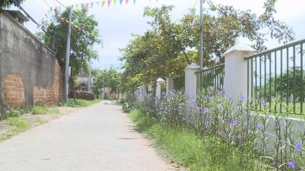 Жители коммуны Донгтам объединились, чтобы построить новую деревню hinh anh 1