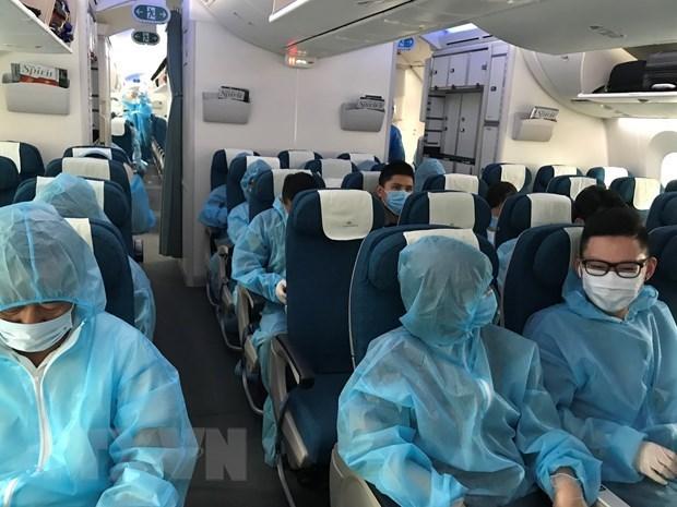 Около 280 вьетнамских граждан доставлены из Европы hinh anh 1