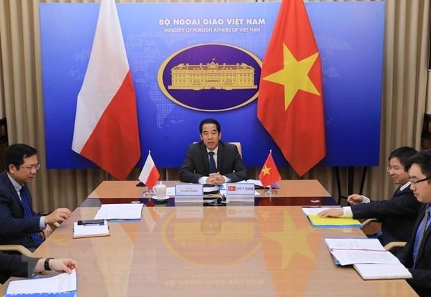 Вьетнам и Польша проводят онлаин-консультации на уровне заместителеи министров по политическим вопросам hinh anh 1