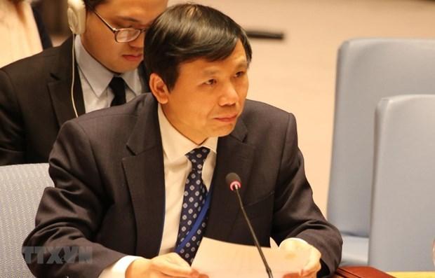 ООН одобрил Резолюцию о сотрудничестве АСЕАН-ООН, предложенную Вьетнамом hinh anh 1