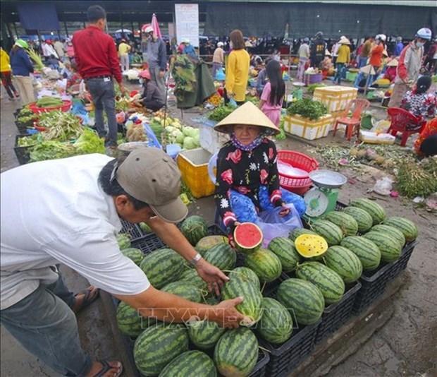 Устоичивое развитие - цель для сельскохозяиственных товаров hinh anh 1
