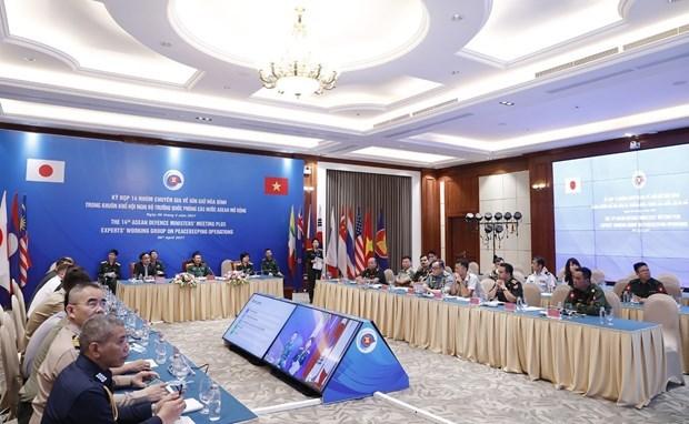 Вьетнам и Япония сопредседатели 14-го заседания РГЭ по миротворческим операциям hinh anh 1