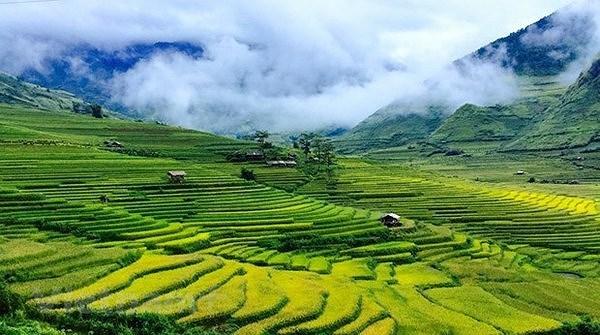 Некоторые теоретические и практические вопросы о социализме и пути к социализму во Вьетнаме hinh anh 6