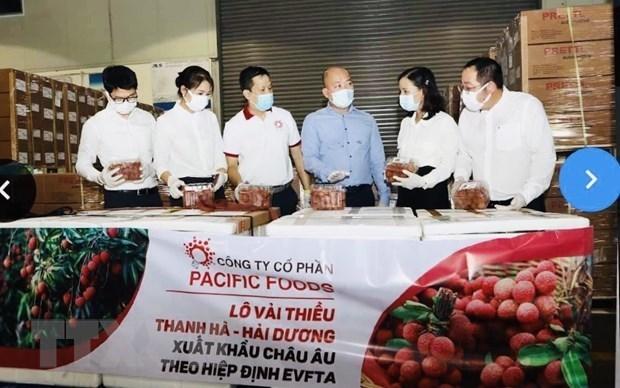 Вьетнамские личи направляются на рынки ЕС hinh anh 1