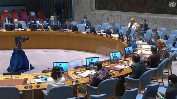 Вьетнам призывает активизировать усилия по защите гражданского населения в Судане hinh anh 1