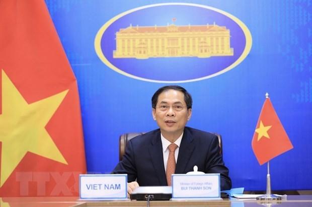 Министр иностранных дел подтвердил приверженность Вьетнама сотрудничеству Меконг-Ганга hinh anh 1