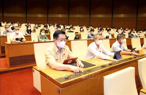 Первая сессия Национального собрания 15-го созыва: Принята Резолюция о 5-летнем плане социально-экономического развития на 2021-2025 годы hinh anh 1